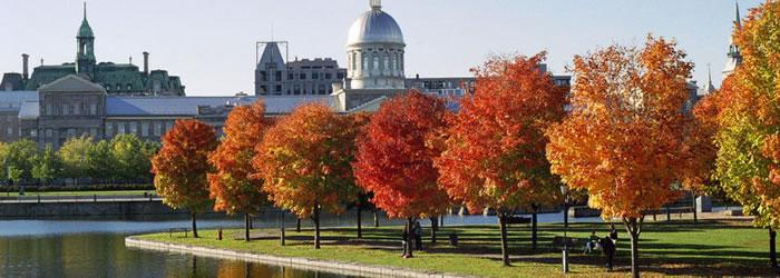 Montreal Foliage in the Parc du bassin Bonsecours and the dome of the Marche Bonsecours in Montreal. Credit:  AnnaKucsma, [CC-BY-SA-2.5], via Wikimedia Commons